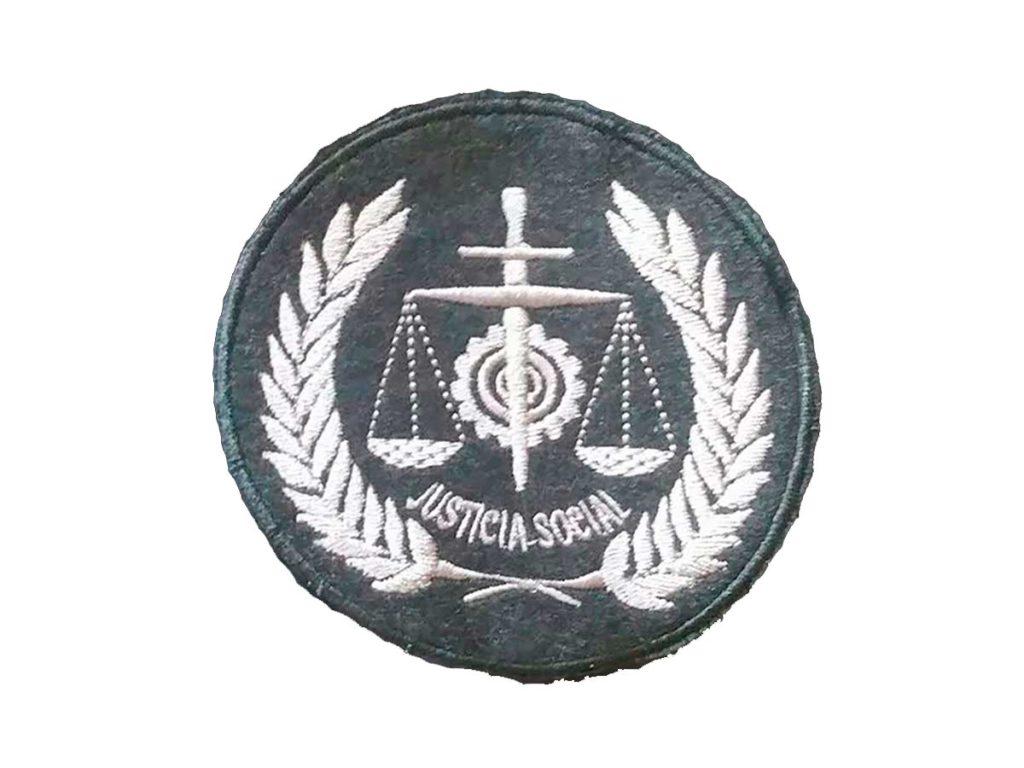 Escudo Graduado Social